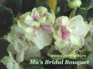 mas Bridal