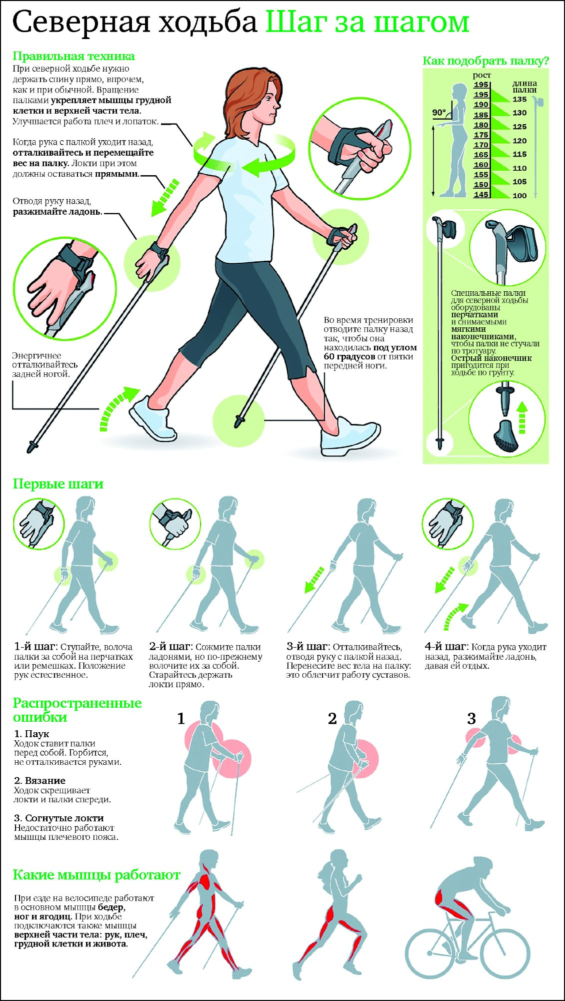 Инструкция: скандинавская ходьба с палками – правильная техника и.